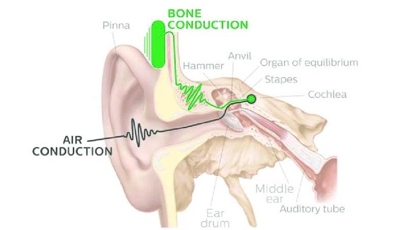 نشان دادن دو مسیر انتقال صدا از بیرون گوش به داخل